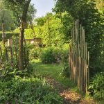 Genieten in eigen zelfvoorzienende tuin